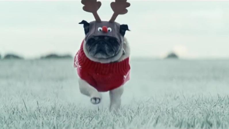 sc-asda-christmas-dogs-2