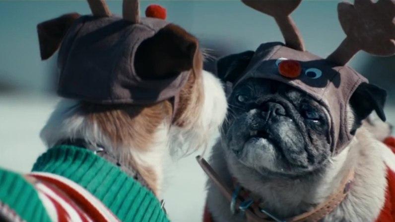sc-asda-christmas-dogs-3