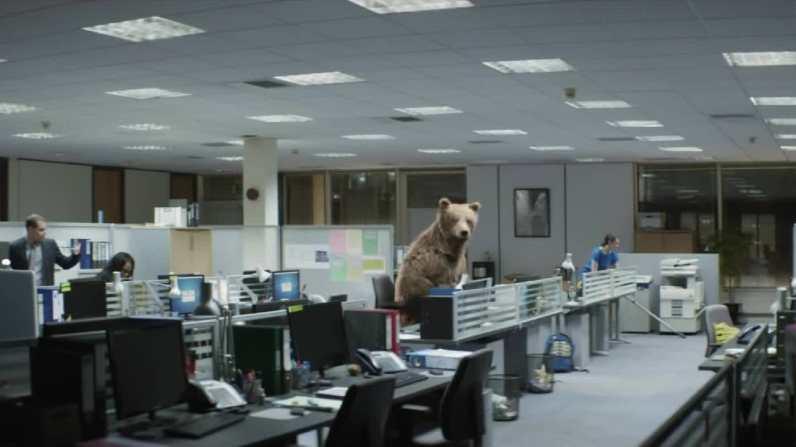 sc-center-parcs-bears-1