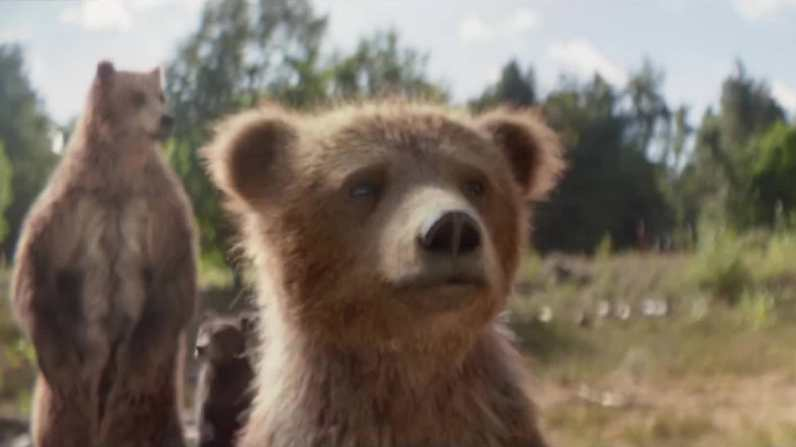 sc-center-parcs-bears-3