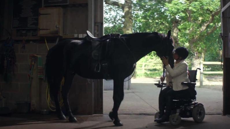 sc-lloyds-bank-horse-story-2