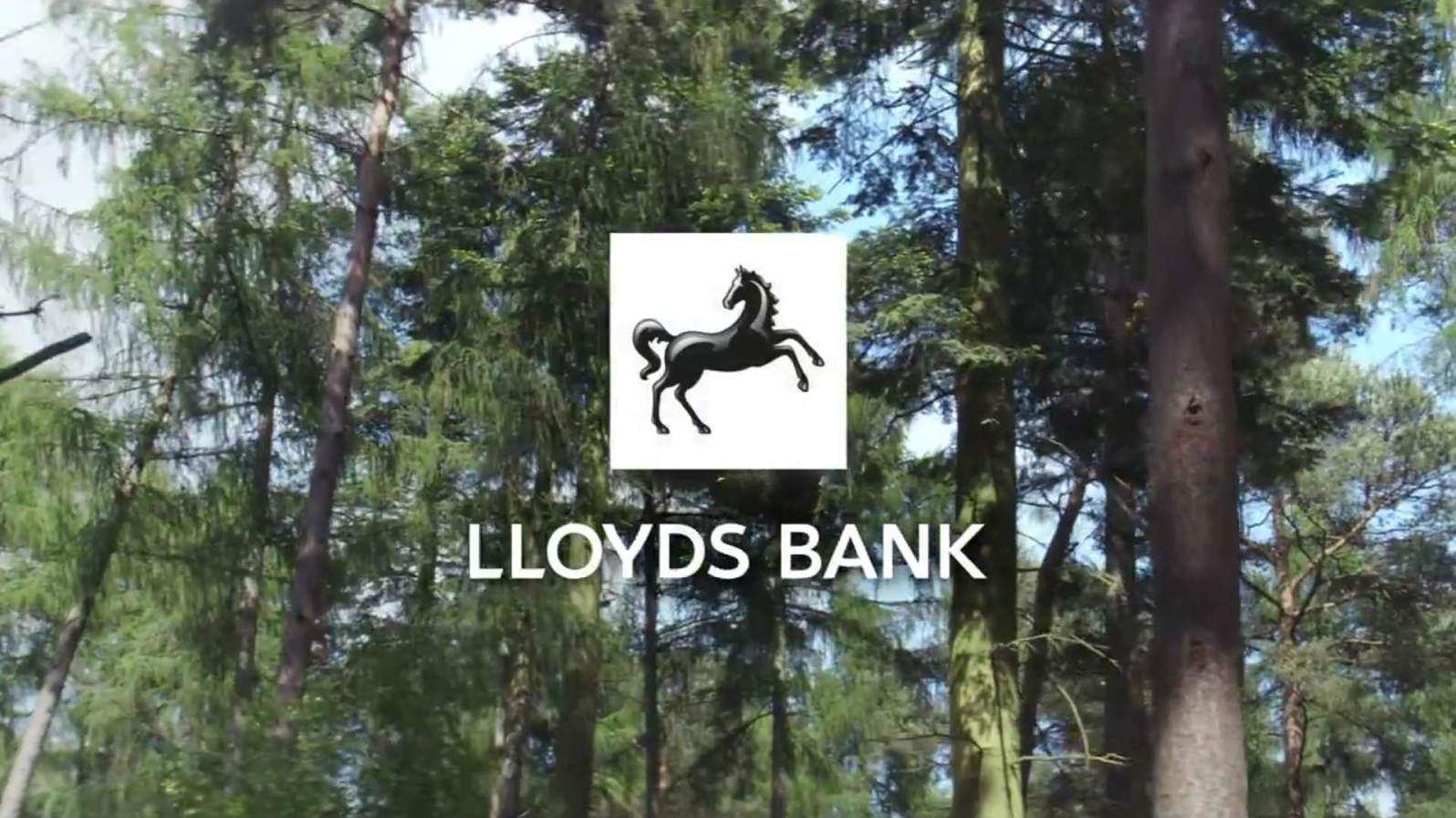 sc-lloyds-bank-horse-story-3